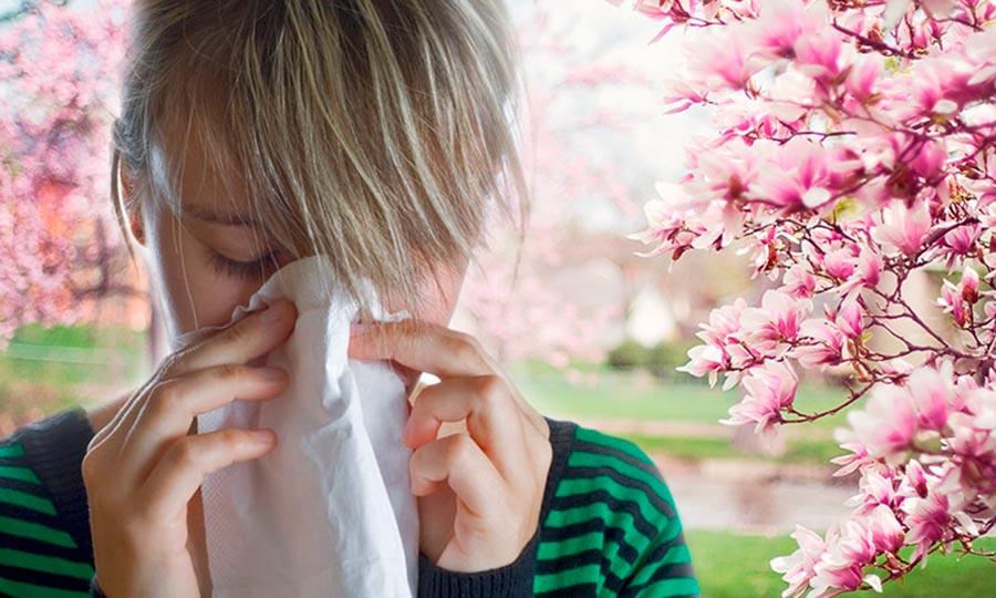 Alergias primaverales, combátelas con una buena alimentación