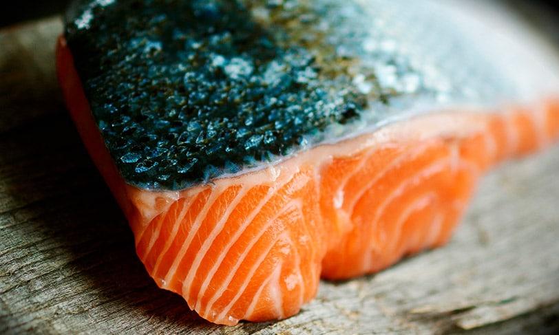 Cocinar-salmón