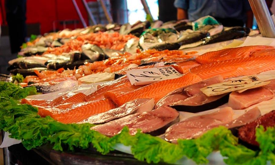 Para una alimentación saludable… ¡incorpora pescado a tu dieta!