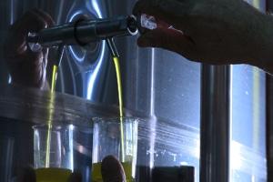 El aceite de oliva virgen extra, beneficioso para revertir el Síndrome Metabólico
