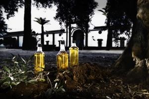 El aceite de oliva, entre los productos más valorados por los turistas extranjeros en España