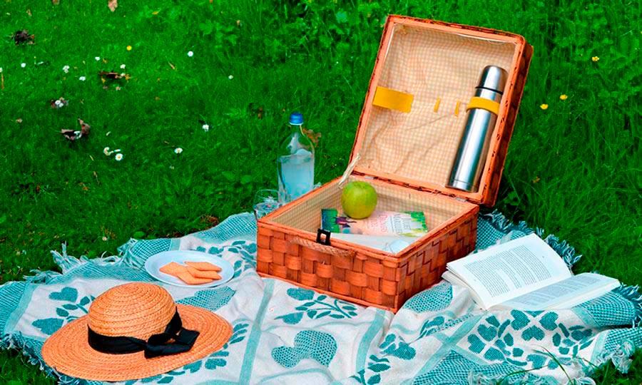 Tips para disfrutar de un picnic perfecto