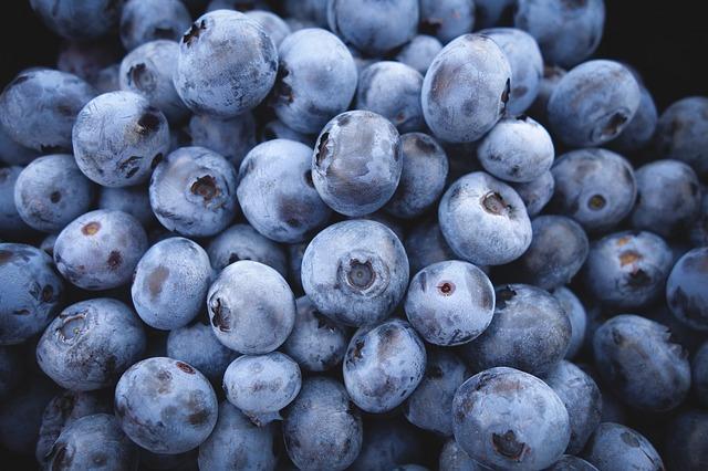 arandanos fruta del bosque