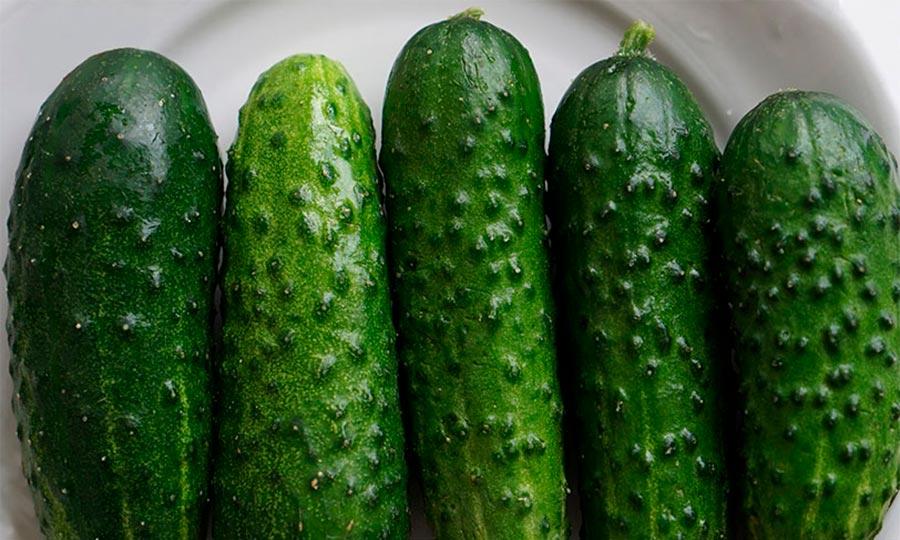 como conservar pepino
