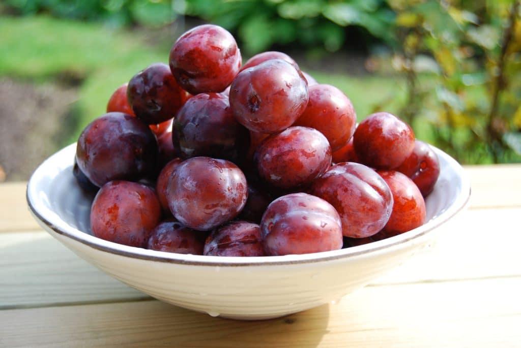 Frutas de hueso_ciruelas
