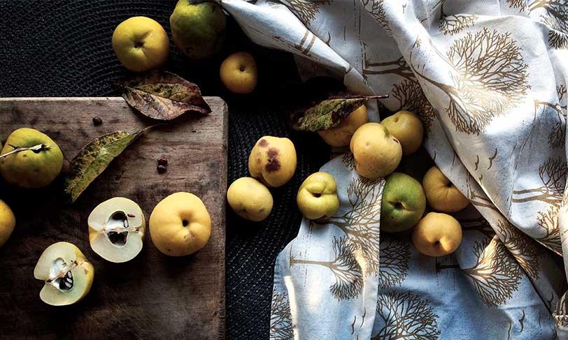 Membrillo: un clásico del otoño con grandes beneficios para la salud