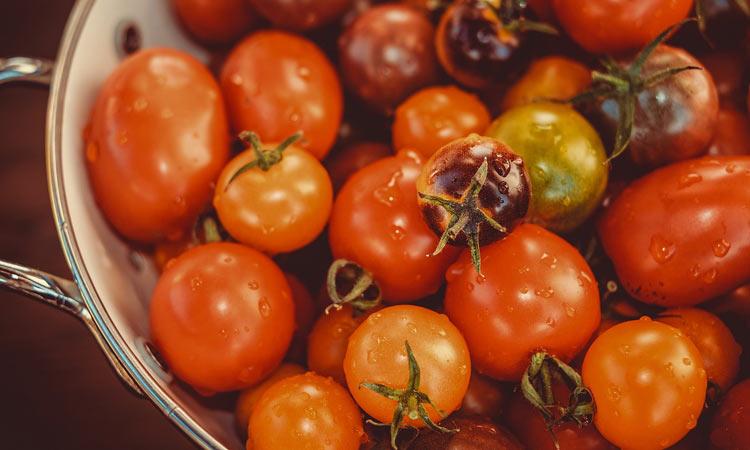 ¿Cúales son las variedades de tomate más habituales en nuestra cocina?