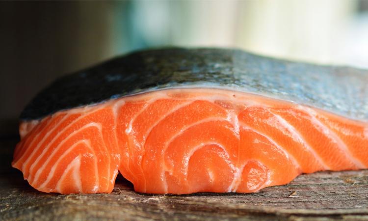 salmón rico en vitamina D